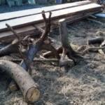 лодка из дерева, будущие детали
